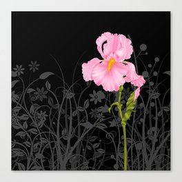 Iris pink Canvas Print