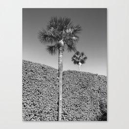 landscape architecture no.1 Canvas Print