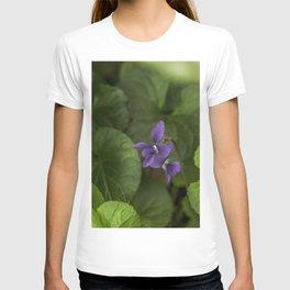 Wild Violets T-shirt