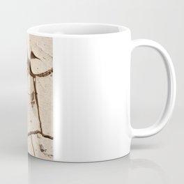 Dry desert soil Coffee Mug