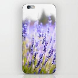 Lavenders iPhone Skin