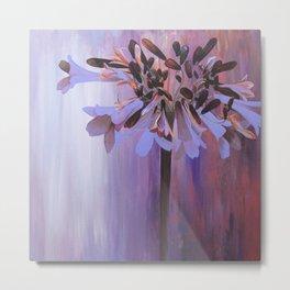 Agapanthus Flower Metal Print