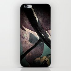 Fall Leaves III iPhone & iPod Skin