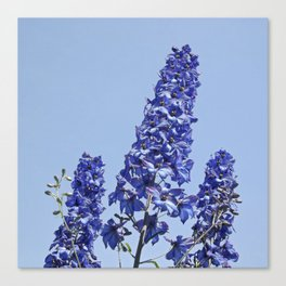 blue blue blue IV Canvas Print