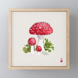 Amanita Muscaria (Fairy Toadstool) Framed Mini Art Print