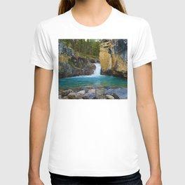 Bottom of Beauty Creek Canyon in Jasper National Park, Canada T-shirt