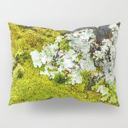 Tree Bark with Lichen#8 Pillow Sham
