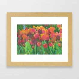 Tulips make even instant coffee taste better. Okay, I lied. Framed Art Print
