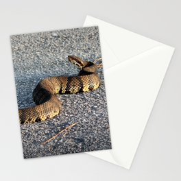 Cottonmouth Full Body Stationery Cards