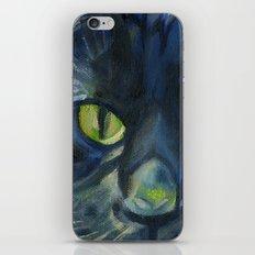 Totoro the cat iPhone & iPod Skin