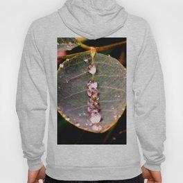 Water Drops Leaf Hoody