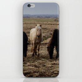 Balanced Horse iPhone Skin