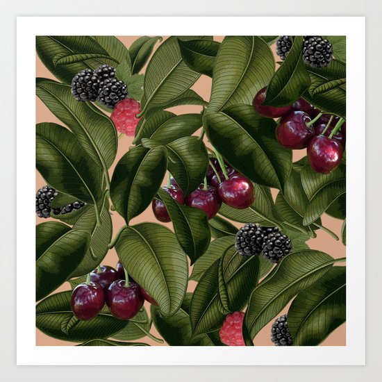 FRUITS AND LEAVES Art Print