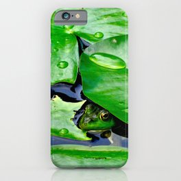 Peek  A Boo frog iPhone Case