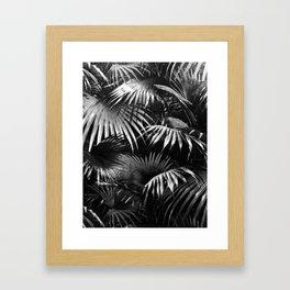 Tropical Botanic Jungle Garden Palm Leaf Black White Framed Art Print
