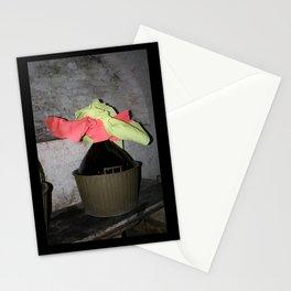 damigiana pasquale Stationery Cards