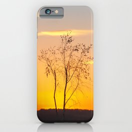 Sunset at St Aidan's iPhone Case