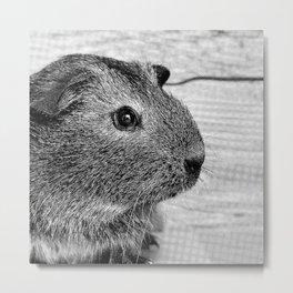Halftone Pixel Fun- Guinea Pig 2 Metal Print