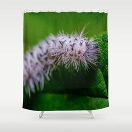 Hickory Tussock Moth Caterpillar. Macro Photo Black and White Caterpillar  Shower Curtain