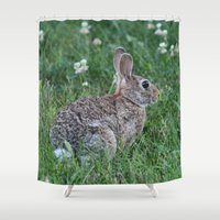 frame Shower Curtains featuring Freeze Frame! by IowaShots