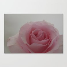 Soft Pink Canvas Print