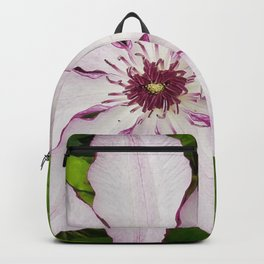 Pale Pink Clematis Backpack