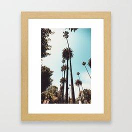 Beverly Hills California Palms Los Angeles Framed Art Print