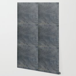 Slate Gray Stucco - Faux Finishes - Rustic Glam - Venetian Plaster Wallpaper