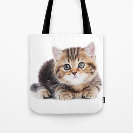 Lonely Kitten Tote Bag