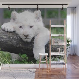 'Too Pooped to Pop' Baby Albino Lion Cub Wall Mural