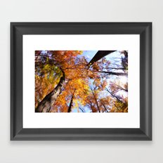 Autumn Sky Framed Art Print