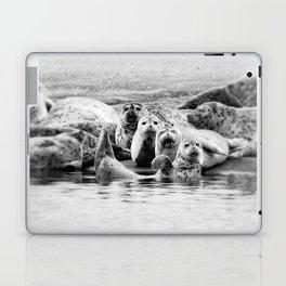 Harbor Seal Hello Laptop & iPad Skin