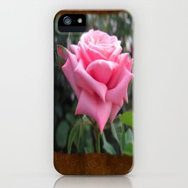 Pink Roses in Anzures 6 Blank P3F0 iPhone Case