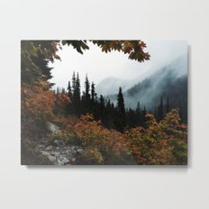 Fall Framed Trail Metal Print