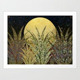 """Golden aloe Zebra midnight sun"" Art Print"