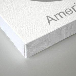 American Silver Canvas Print