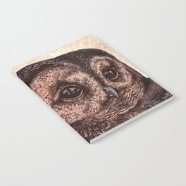 Tawny Owl Pink Notebook
