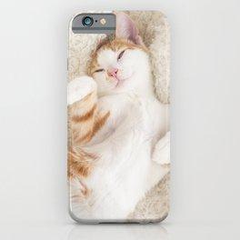 Cute baby orange and white tabby kitten iPhone Case