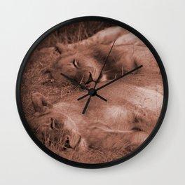 On Safari - Lion Pride Sleeping in Sepia Wall Clock