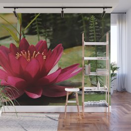 Water Lily Red Pond Wall Mural