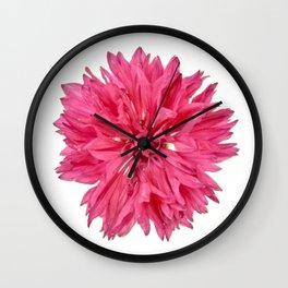 Pink Cornflower Wall Clock