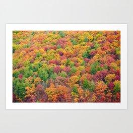 Fall Drive 005 Art Print