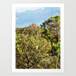 Beyond the Treetops Art Print