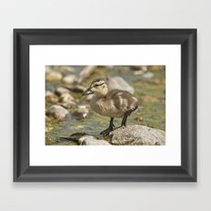 Water means Everything Framed Art Print