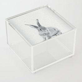 Rabbit 25 Acrylic Box