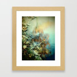 Monet Framed Art Print