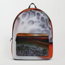 Chasing Fame Backpack