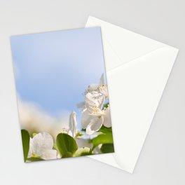 Flowering Cerasus cherry tree Stationery Cards
