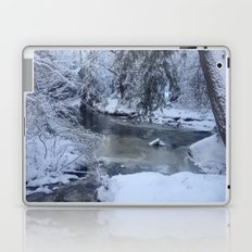 St-André river Laptop & iPad Skin