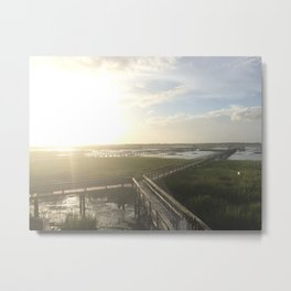 Charleston Marsh Metal Print